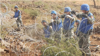 Chinese engineers complete UN peacekeeping base construction in Darfur