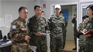 Chinese, ROK's peacekeepers to Lebanon conduct medical exchange
