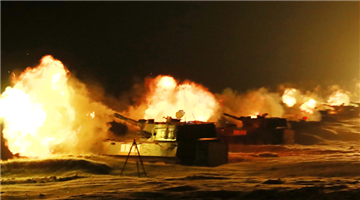 Self-propelled howitzers in night live-fire training