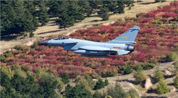 J-10 fighter jet flies over paddy field