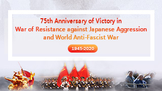 75th victory anniversary of anti-Japanese war, WWII
