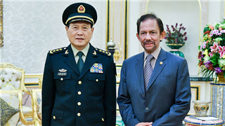 Brunei's Sultan meets Chinese Defense Minister