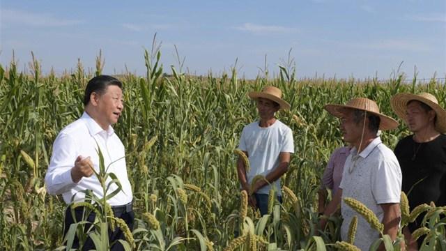 Xi inspects northwest China's Shaanxi Province