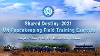 Shared Destiny-2021