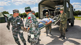 China, Germany complete joint exercise on medical support