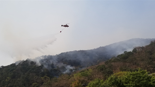 Over 1,400 military personnel battle forest fire in China's Xichang