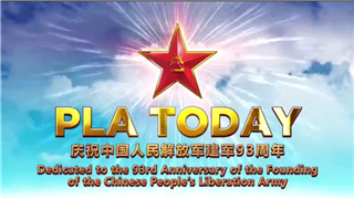The Chinese People's Liberation Army of Today